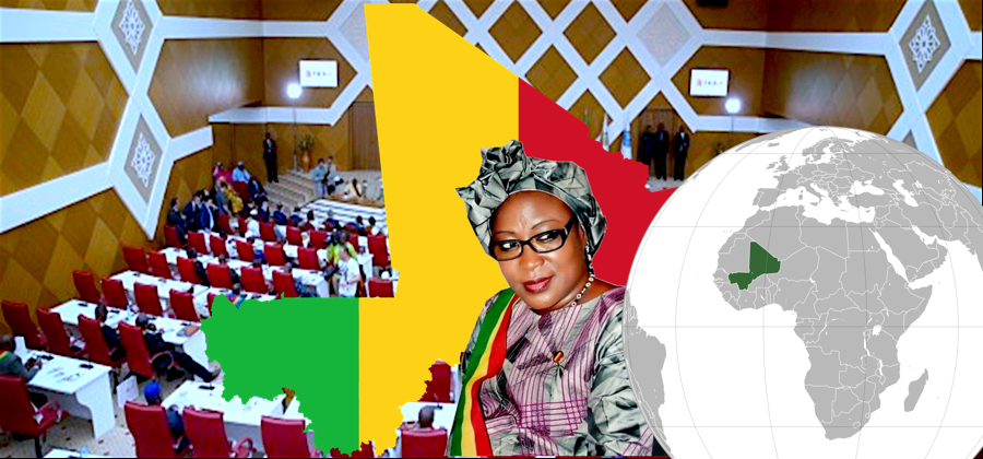 Excellente Intervention de l'honorable Diallo Touré Aïssata à l'interpellation du Gouvernement sur la situation d'insécurité au centre du Mali