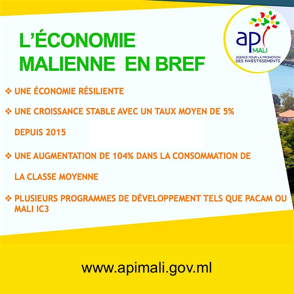 API-MALI- ÉCONOMIE