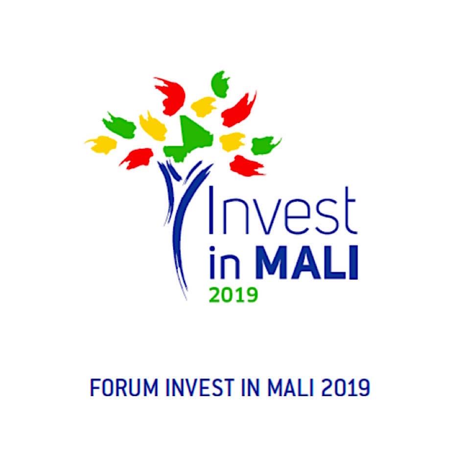 INVEST IN MALI 2019-API